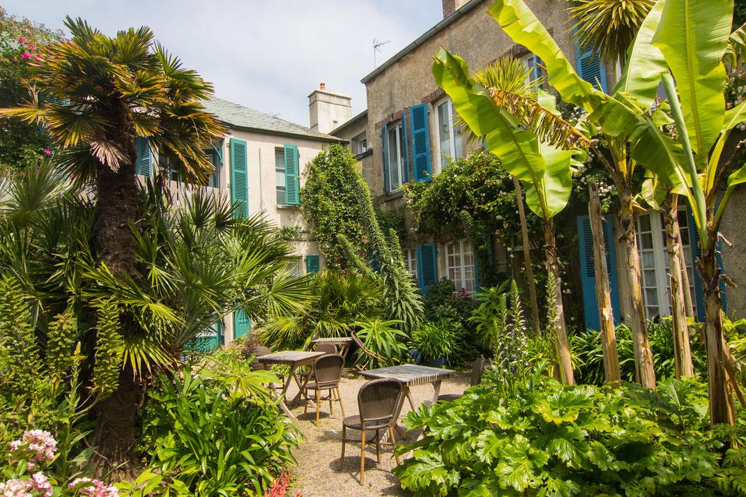 Palmen stehen im Garten des Hotel Les Fuchsias in Saint-Vaast-La-Hougue im Val de Saire in der Normandie
