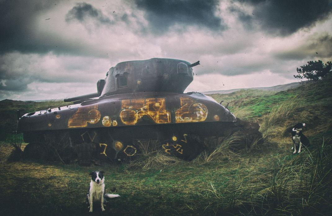 Urlaub mit Hund Normandie, D-Day, D-Day mit Hund, WKII mit Hund
