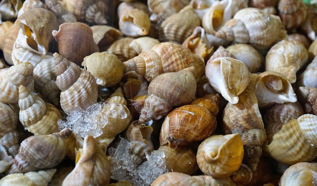 Wochenmarkt, Normandie, Calvados, Meeresfrüchte