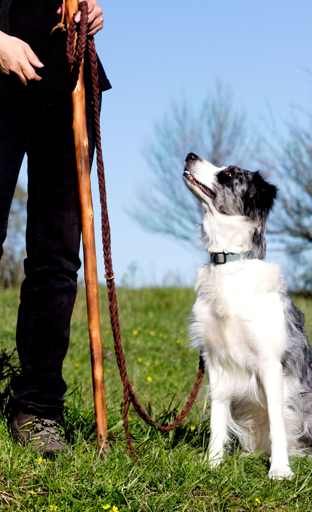 Wandern mit Hund, Normandie, Cotentin