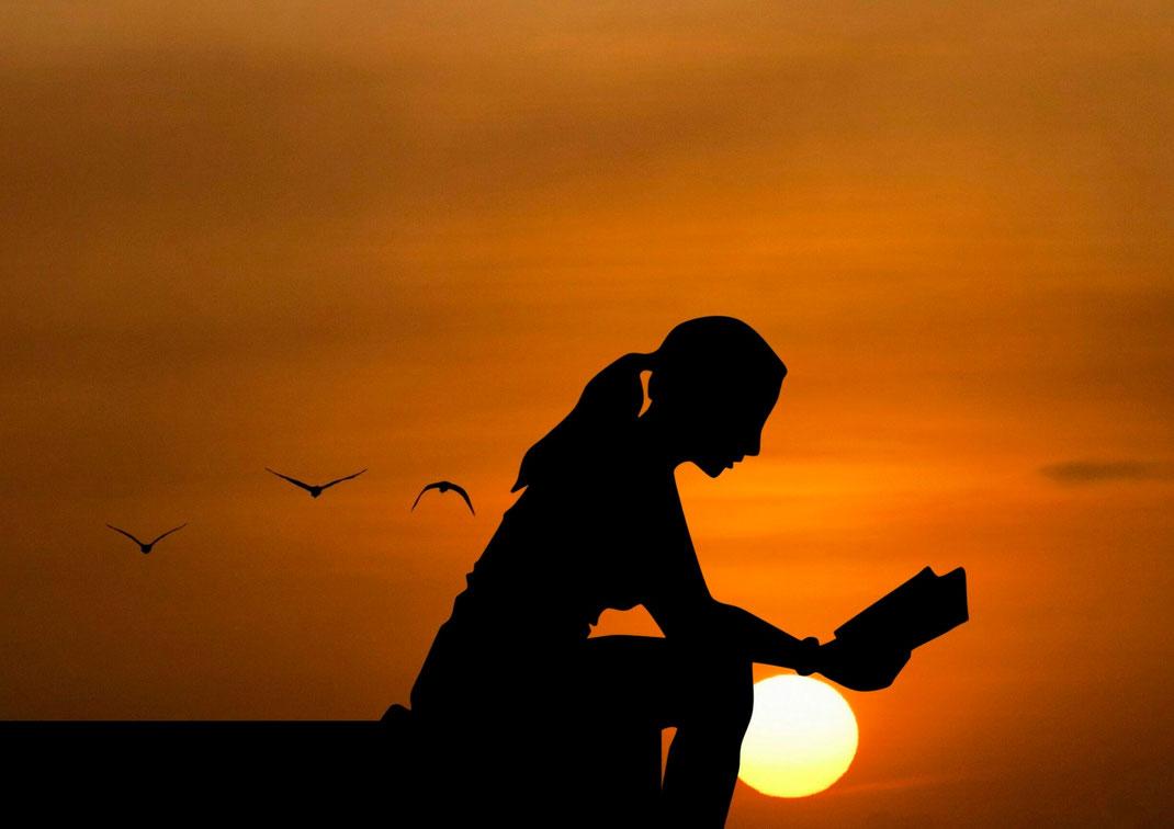 Eine Frau liest vor Sonnenuntergang, drei Möwen fliegen im Hintergrund. Bildquelle: Canva