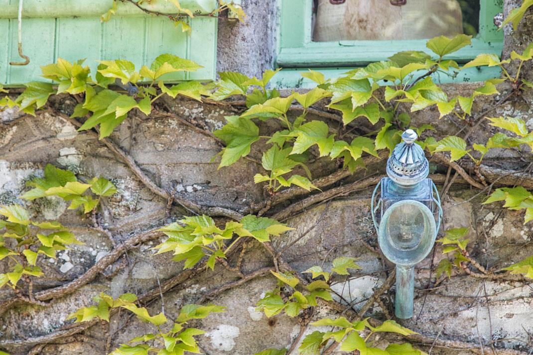 Hausfassade im Weiler Gruchy auf der Cotentin-Halbinsel. Wilder Wein rankt um eine nostalgische Lampe