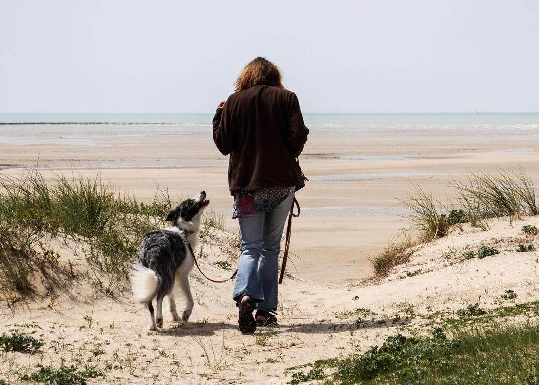 Ein Border Collie und eine Frau in den Dünen der Normandie.
