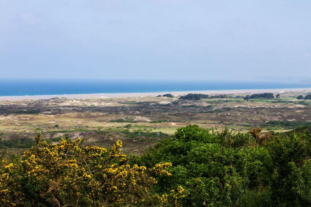 Dünenlandschaft bei Hatrainville auf der Halbinsel Cotentin in der Normandie.