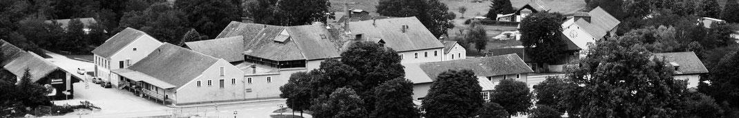 Wiesenwelt, Wiesenwelt.com, Wiesmühl a.d. Alz, Engelsberg, Benno Wieser, Benno Wieser GmbH & Co. KG, besonderer Ort, besondere Menschen, Tierwelt, Schederbach, Libellen, Brauerei Wieser, Brauerei Stallbauer, Gutsherrenturm