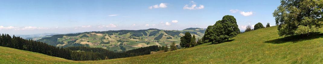 Aeschlenalp Panorama