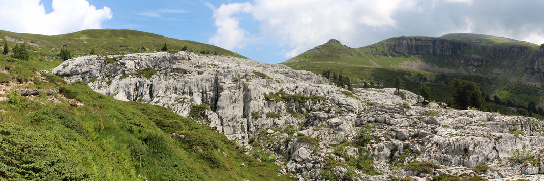 Karrenfelsen beim Innerbergli - Hohgant