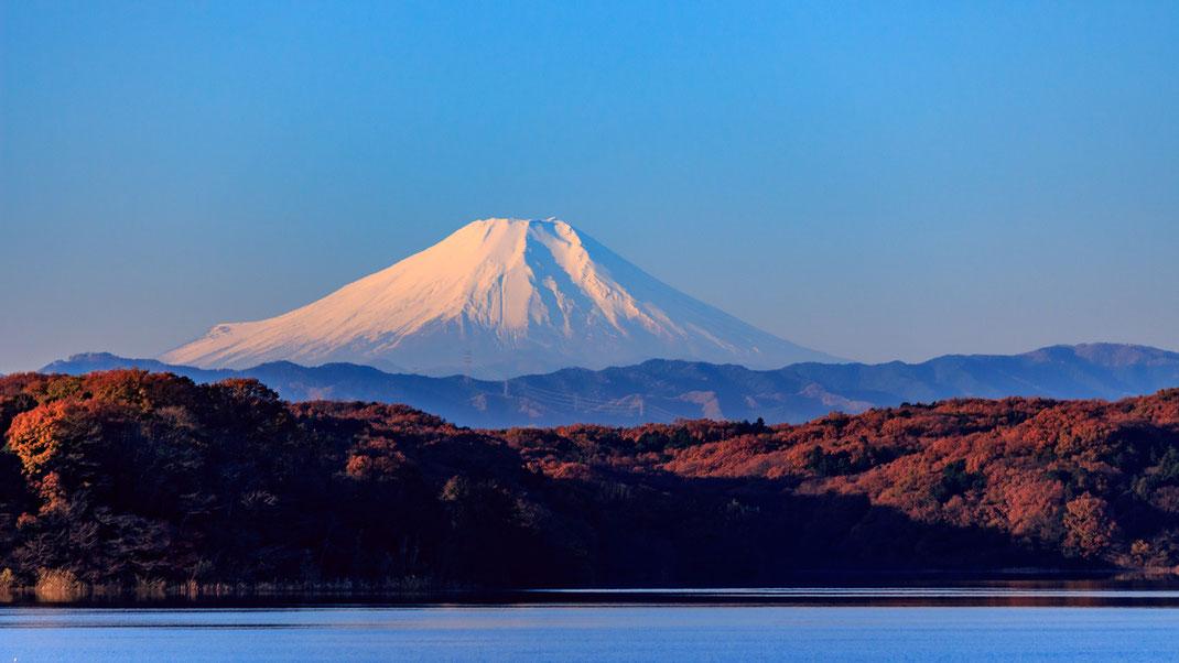 狭山湖からの富士山 © Koichi-Hayakawa クリエイティブ・コモンズ・ライセンス(表示4.0 国際)https://creativecommons.org/licenses/by/4.0/