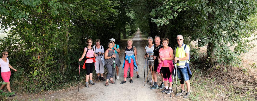 En après-midi, sur la Voie Verte (ancienne voie ferrée de Vitré à La Guerche) le groupe de marche tonique sous la conduite du coach Dominique
