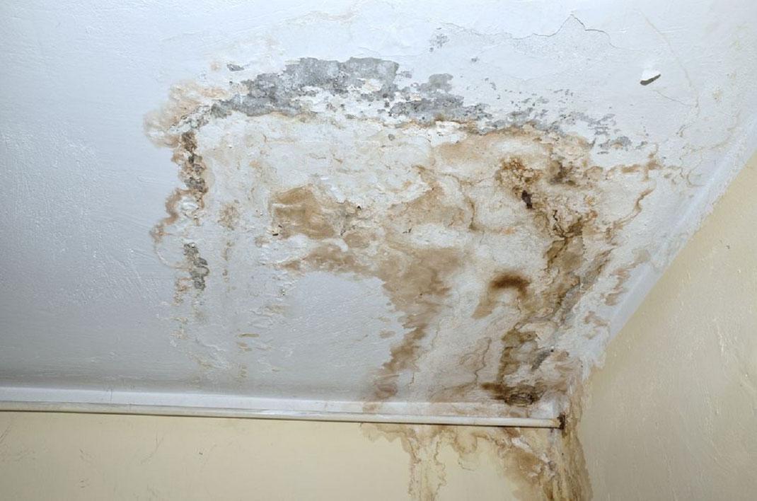 proteger casa de goteras y humedad