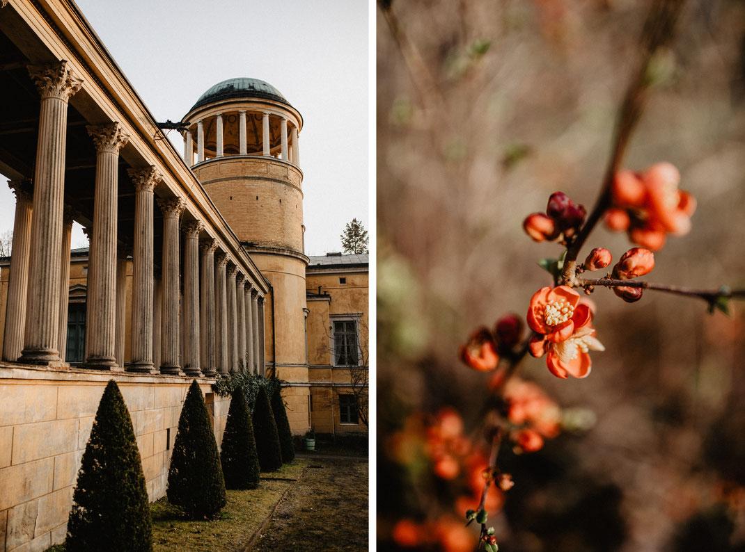 Heiraten im Schloss Lindstedt in Potsdam Schlosshochzeit Standesamtliche Hochzeit Hochzeitsfotograf