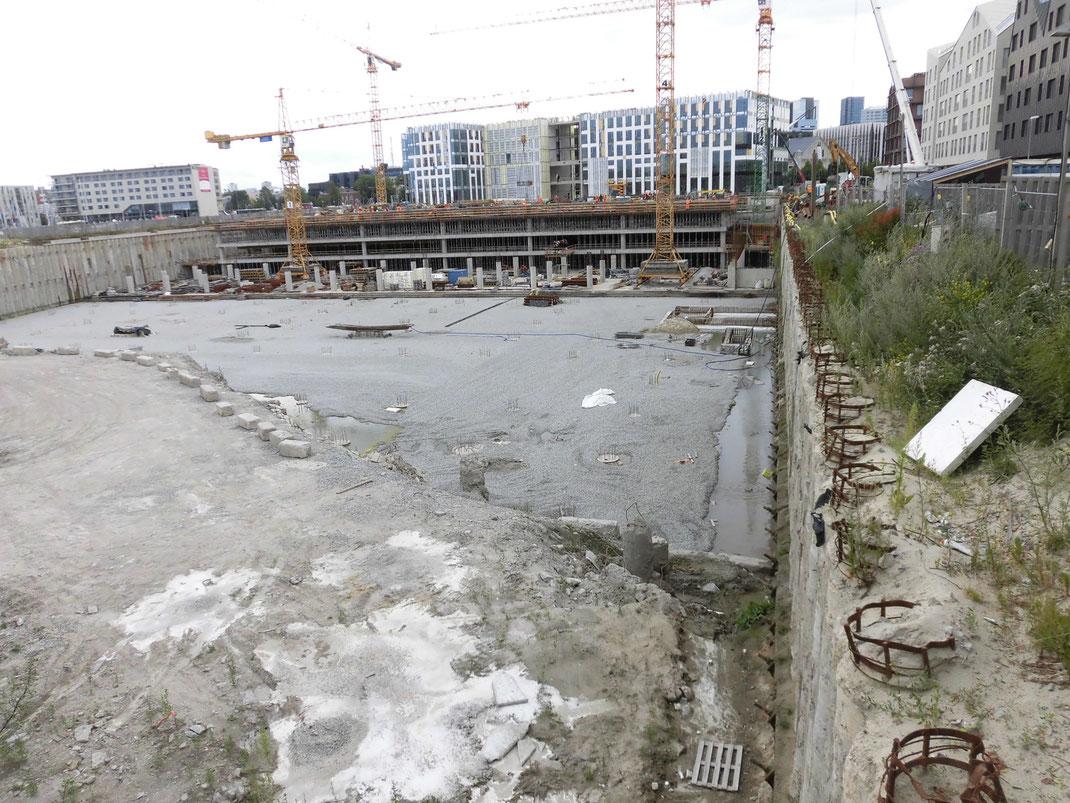 2019年7月 隣りも始まった、奥に見えるのが去年建ててた建物(しかし未完成)