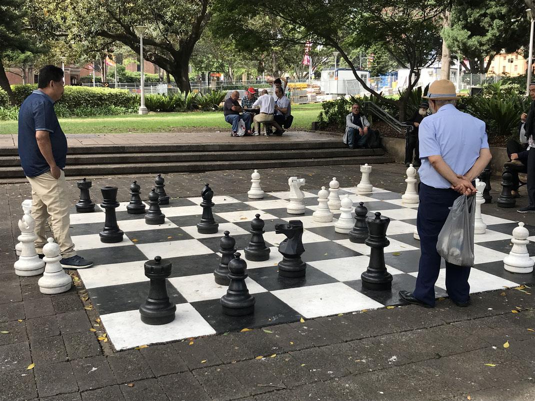巨大なチェス盤