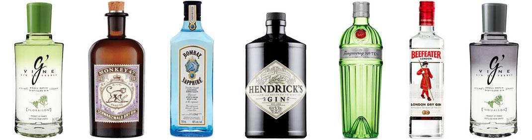 Bottiglie dei migliori gin del mondo all'Ombelico Rivoli Torino