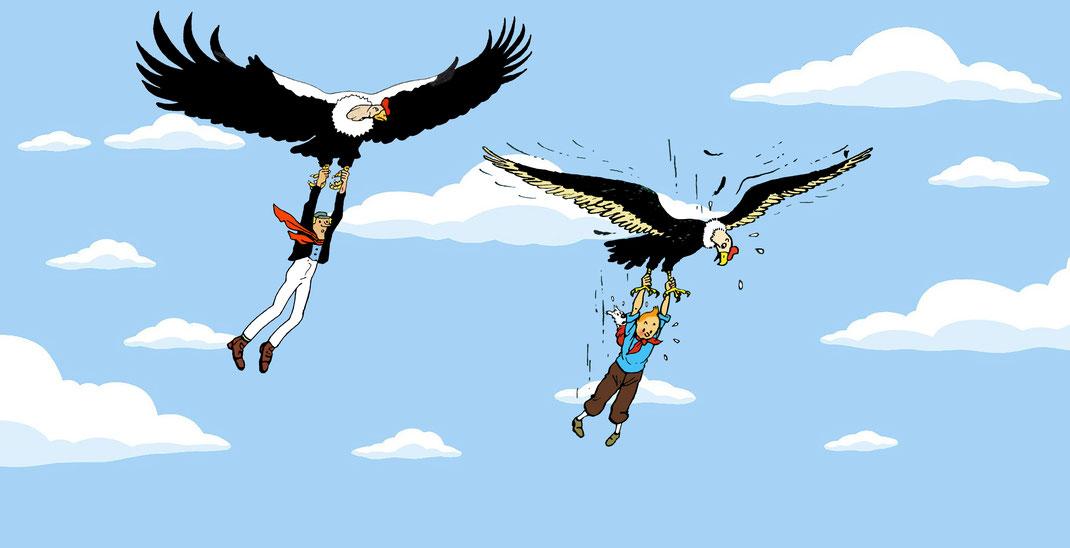 El Massagran de Josep M. Folch i Torres (1910) ensenya a volar en còndor, sense massa èxit, al Tintín d´Hergé (Temple del sol. 1948)