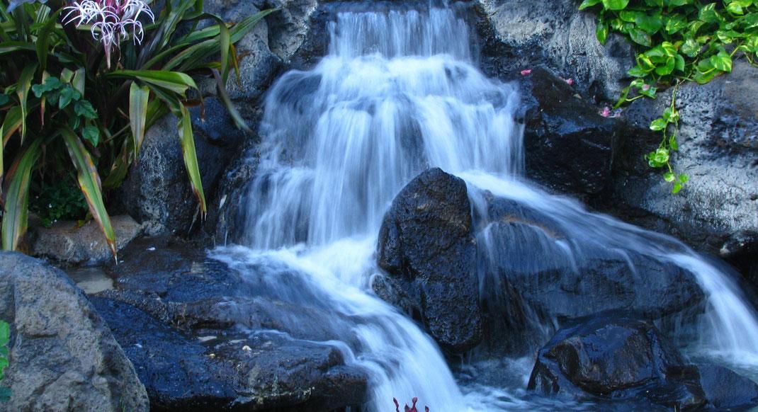 Hawiianische Heilkunde