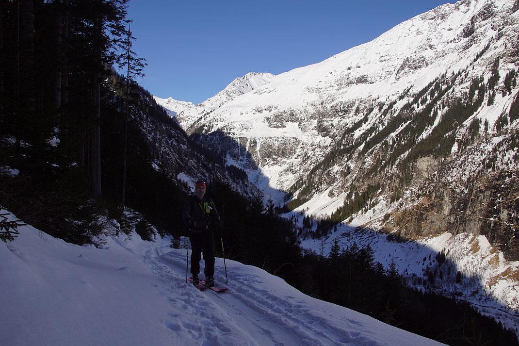 Unterwegs im unteren Teil am Forstweg