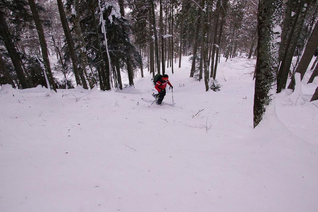 Aufstieg im über 30° steilen Wald auf rund 1300m Seehöhe