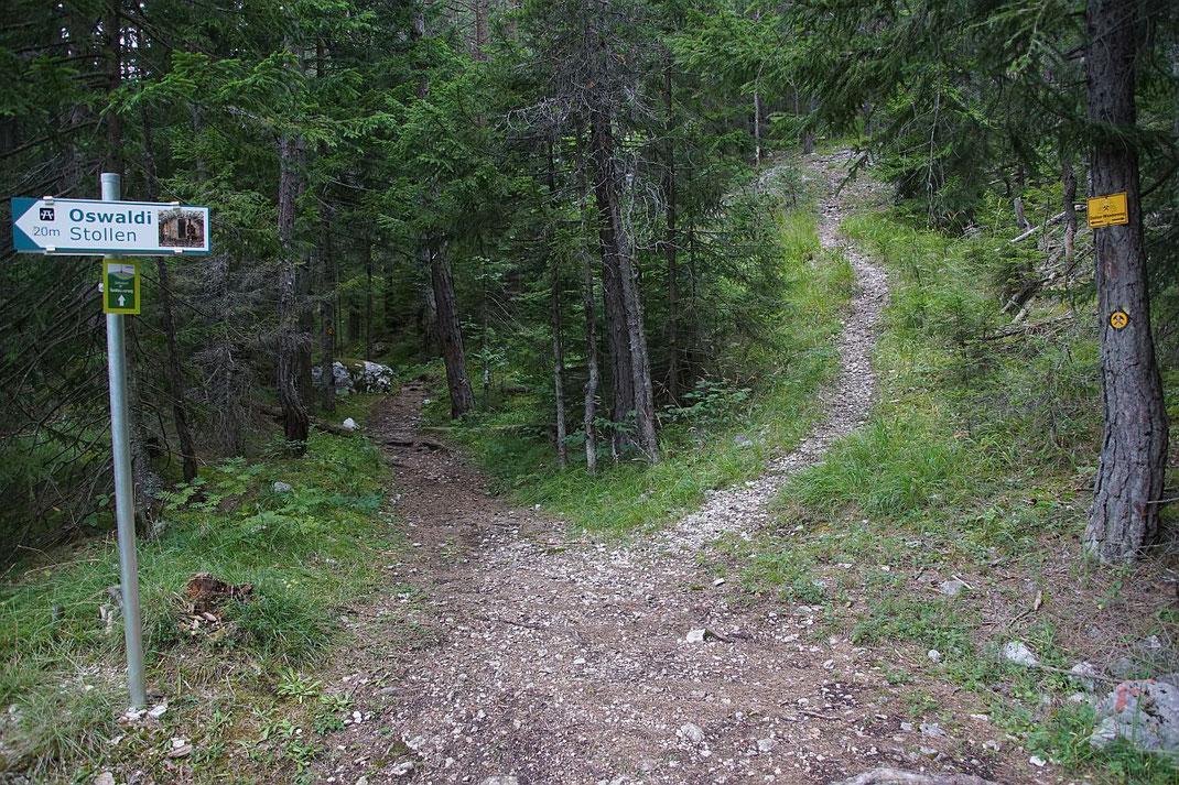 Querung mit dem Stollenwanderweg, der Aufstieg zum Feldkofel geht hier im Bild nach rechts hinauf