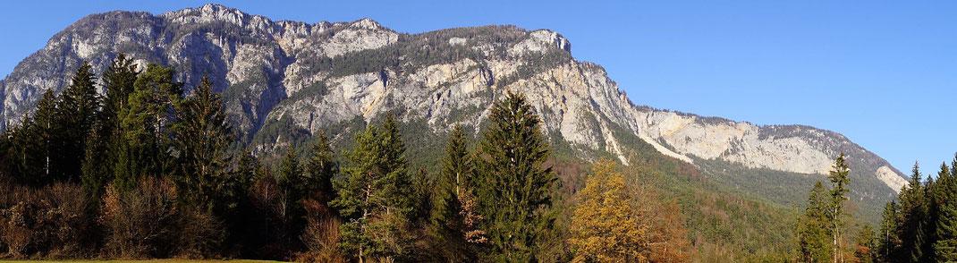 Wandpanorama; rechts der höchsten Bäume geht es hinauf und ganz rechts im Bild zwischen Kranzwand und Roter Wand geht es zurück