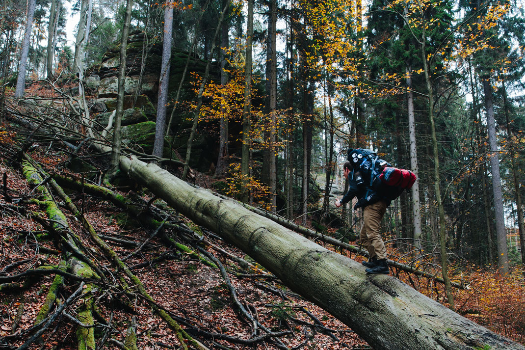 deuter, globetrotter, trekker, sächsische Schweiz, saxony switzerland, michael, fiukowski, berlin, germany, europe, wanderlust, explore, discover, photographer, professional, pro, profi, husky, autumn, fall
