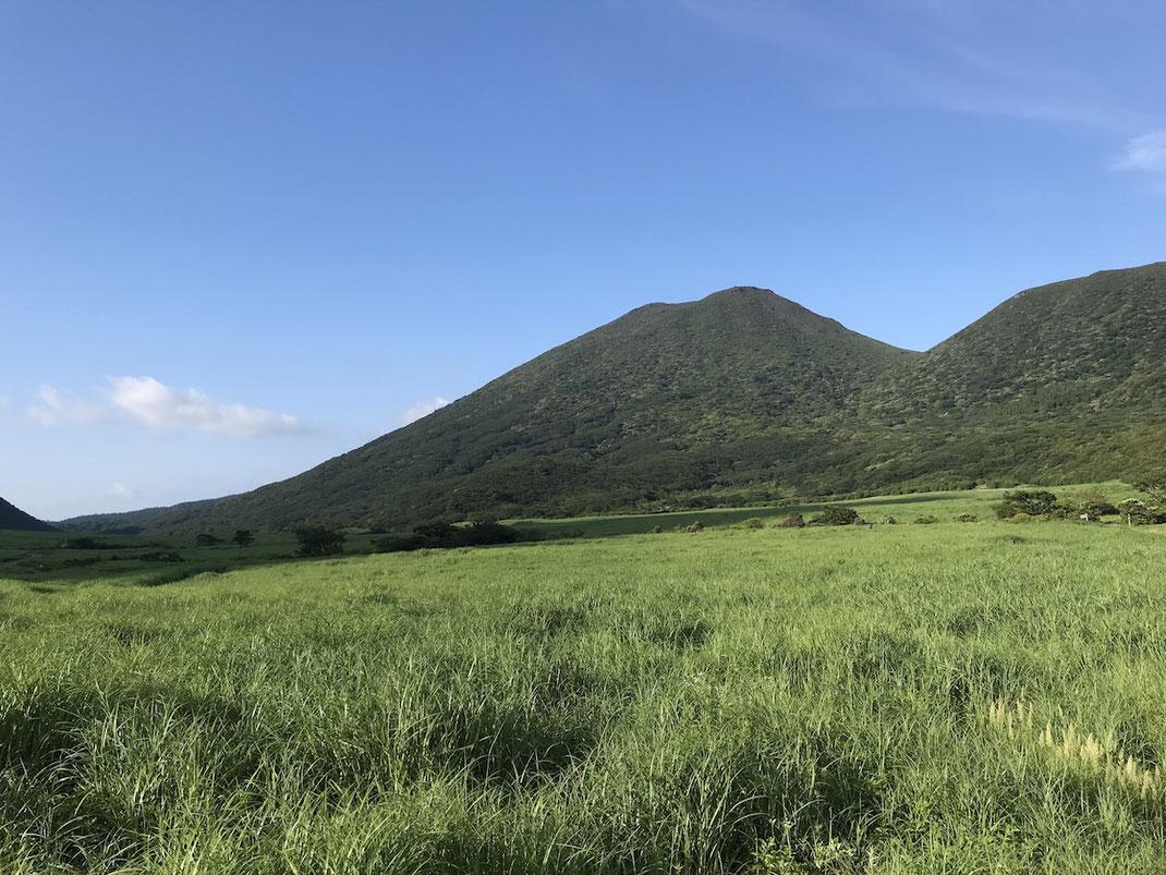 坊ガツルの湿原