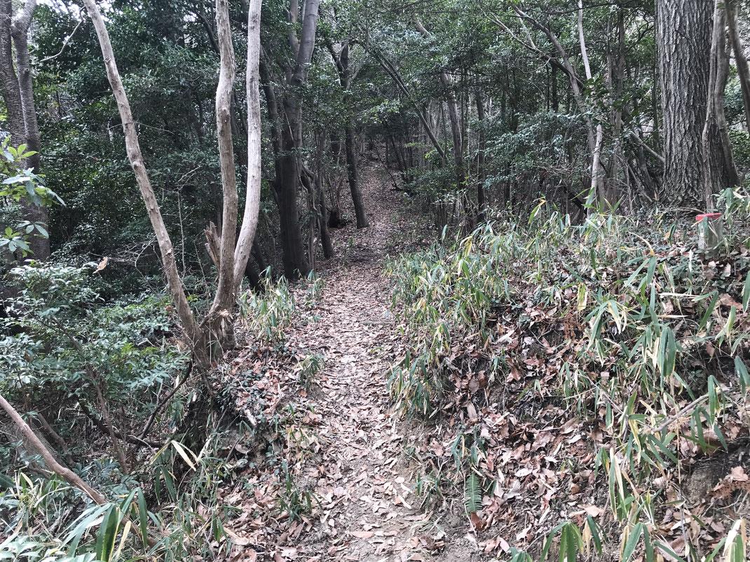 広島南アルプス縦走路