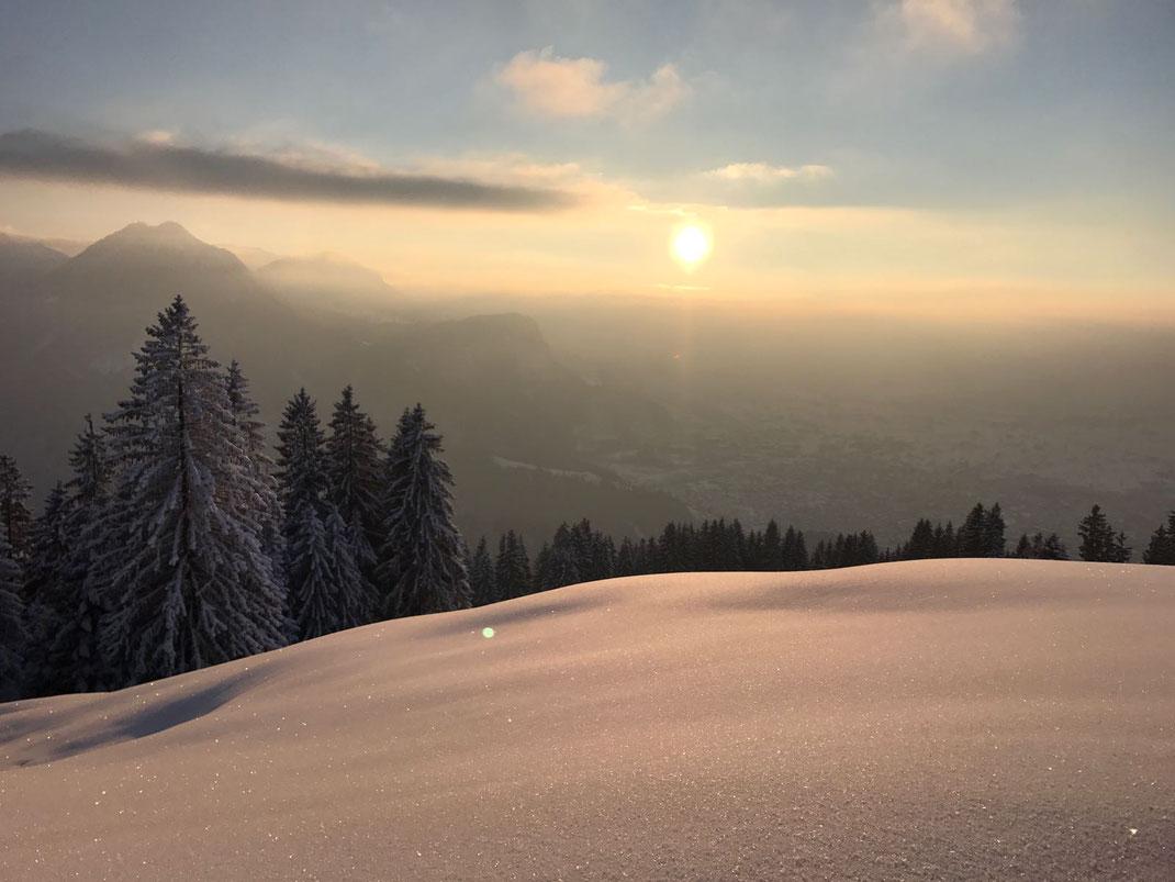 Doldenblütler Seminar in Lech am Arlberg  Kräuterwerkstatt Lech