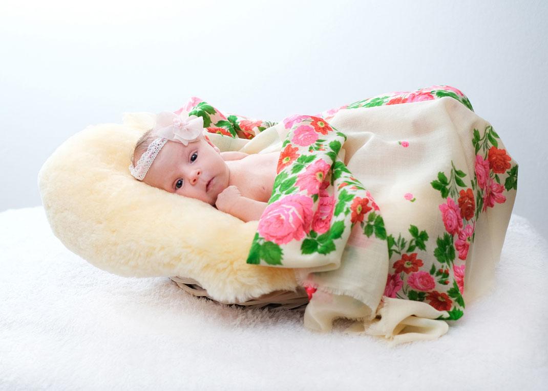 babyfotografie-hamburg-tina taege fotografie
