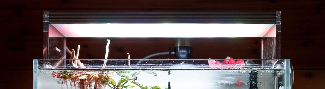 Twinstar 360ES RGB LED Beleuchtung für Aquarien