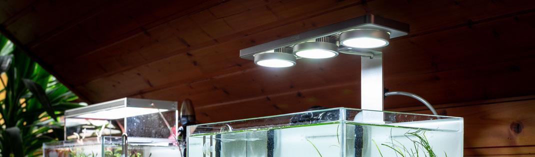 ATLEDTiS Cookie+ RGB LED Beleuchtung für Aquarien