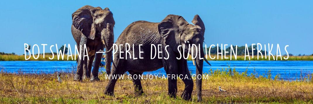 Botswana Safari Paradies
