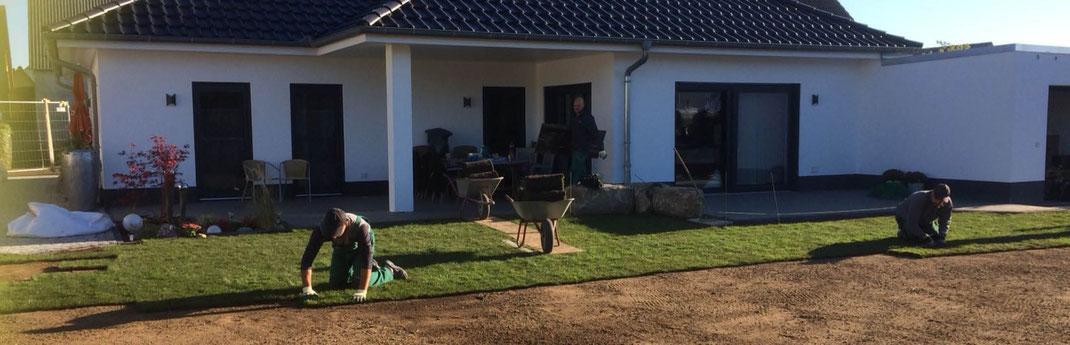 Gartenpflege Franke - Ihr Landschaftsgaertner für  in Nidda, Hungen, Lich, Buedingen, Bad Vilbel, Butzbach, Altenstadt, Bad Vilbel und Wölfersheim