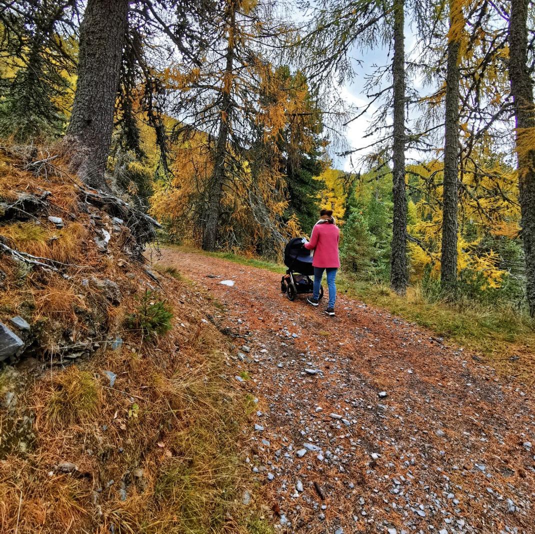 Wandern Kinderwagen Turracher Höhe