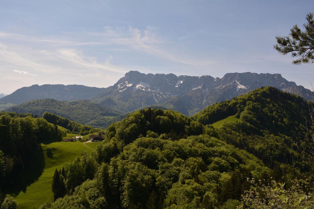 Mehlweg mit Blick auf Untersberg