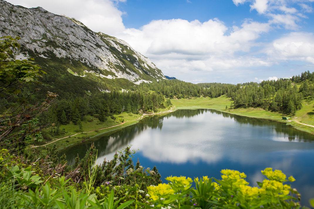 Conny - Foto 4 - Wunderschönes Österreich
