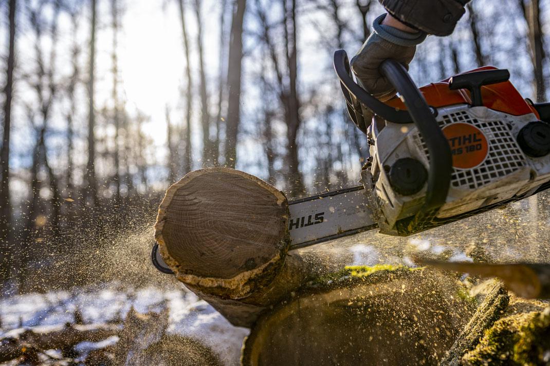 Gerald - Foto 5 - Aus Baum wird Holz