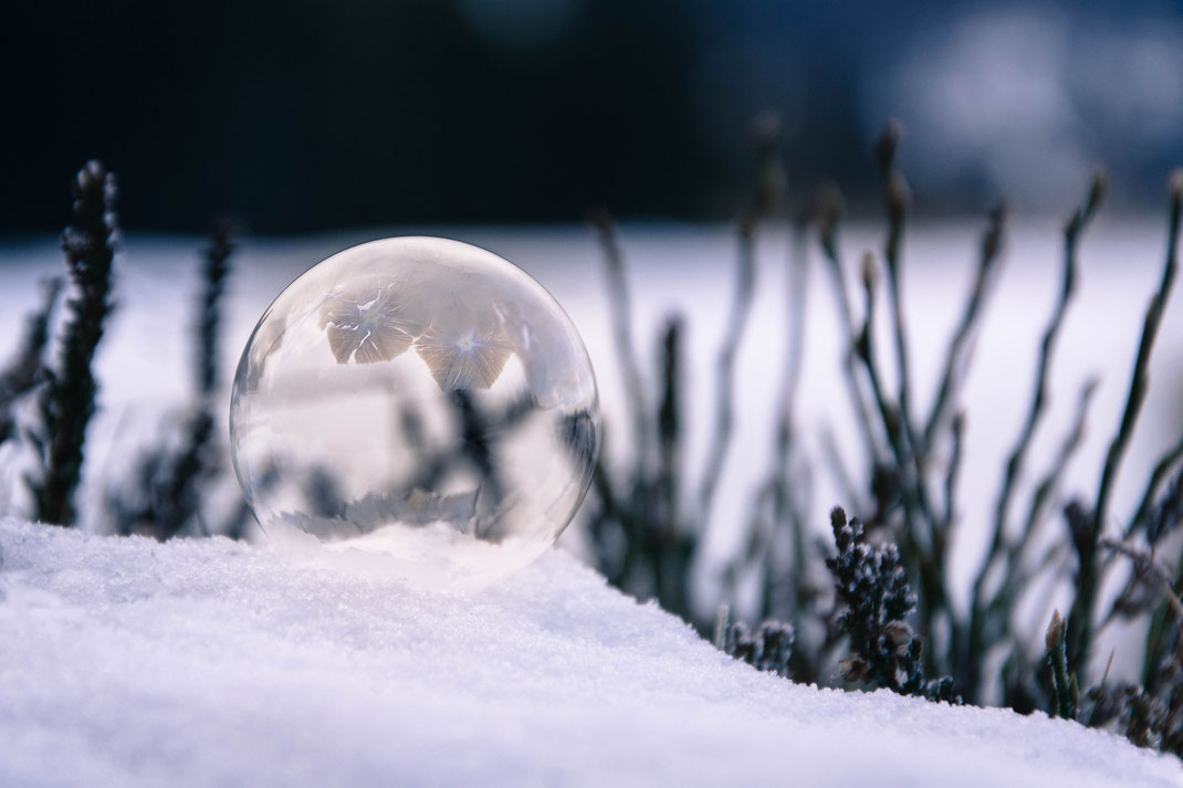 Andrea - Foto 8 - Winterzauber
