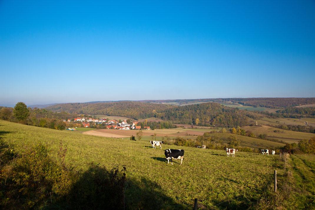 Blick vom Sohlberg unmittelbar vor dem Wanderparkplatz P 21 Point India auf Lüderbach