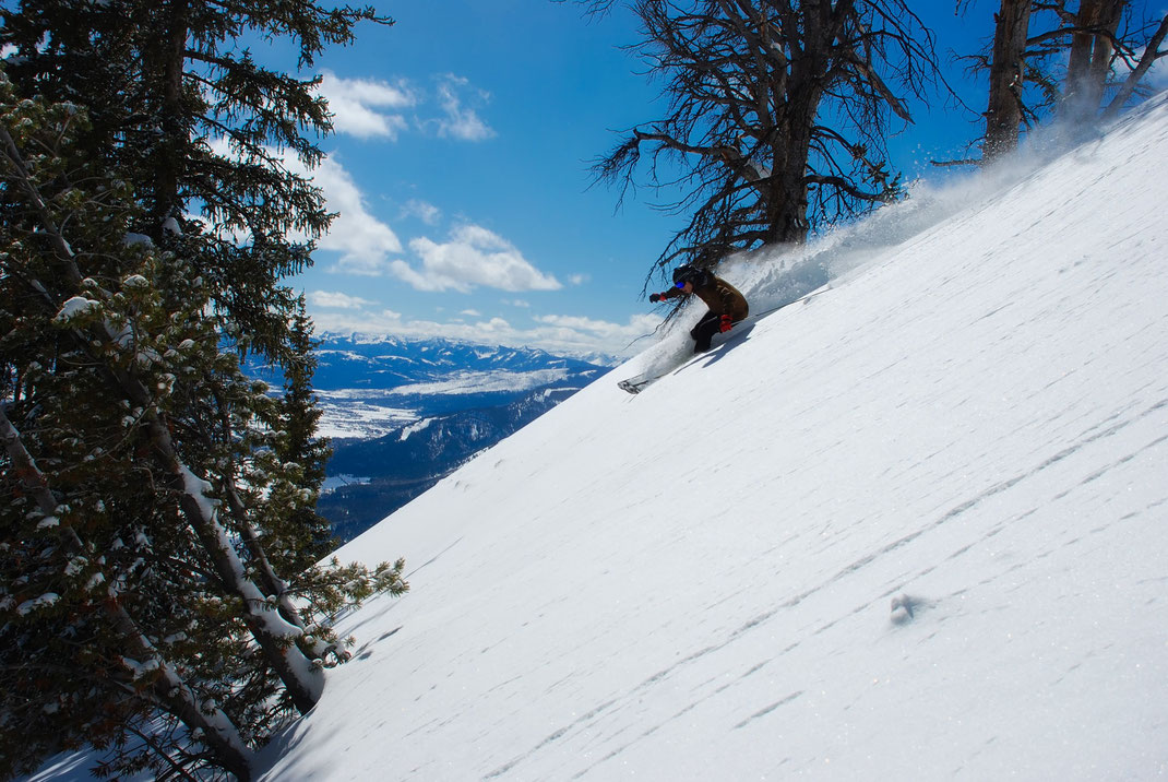 Skier skiing down steep mountain with trees
