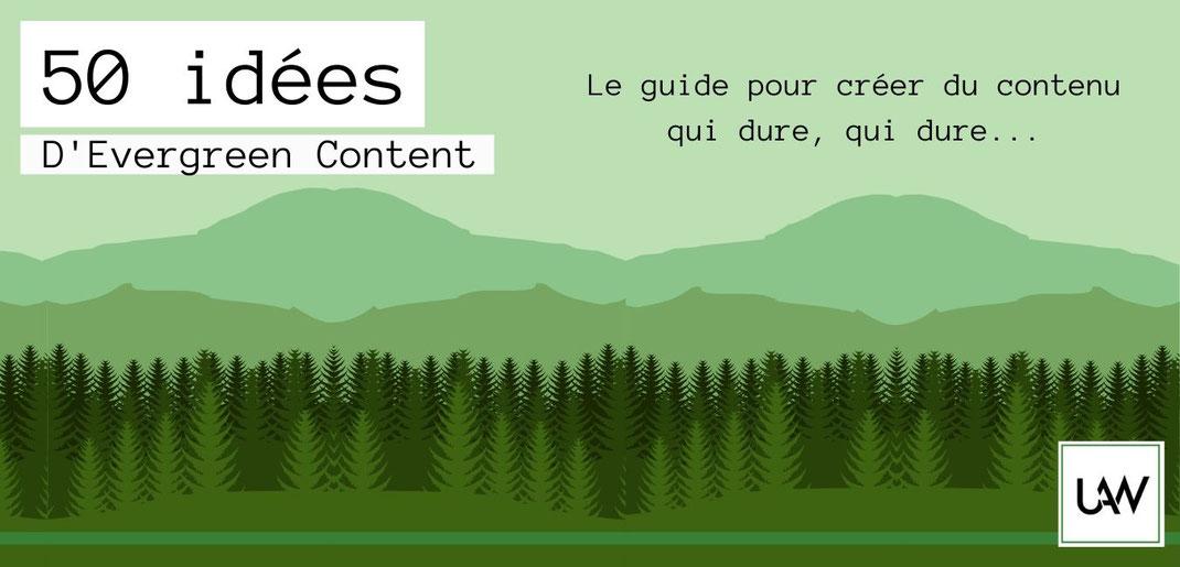 Evergreen content forêt de pin