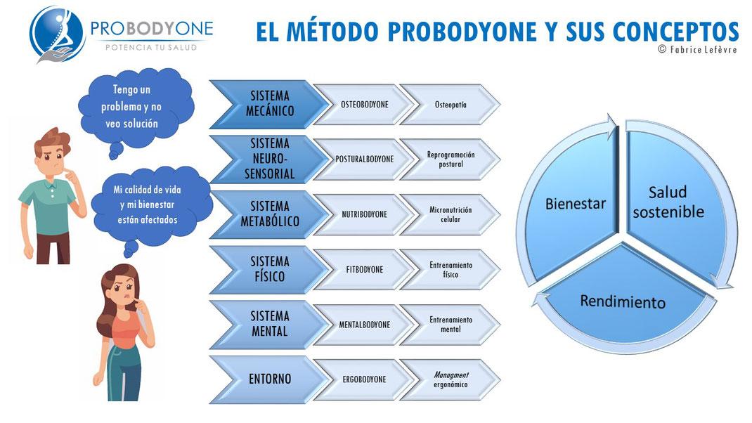 Probodyone; osteopatía; Posturología; nutrición; ergonomía; coaching;
