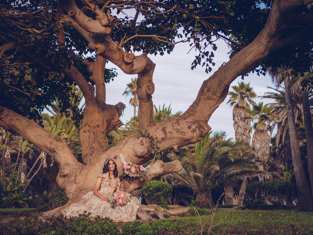 Fotografia 15 anos en tijuana