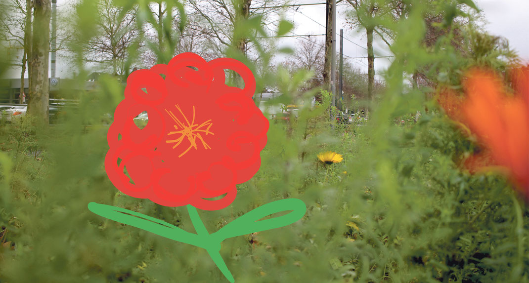 Der Clevische Ring in Köln-Mülheim mit einem wilden Blumenbeet.