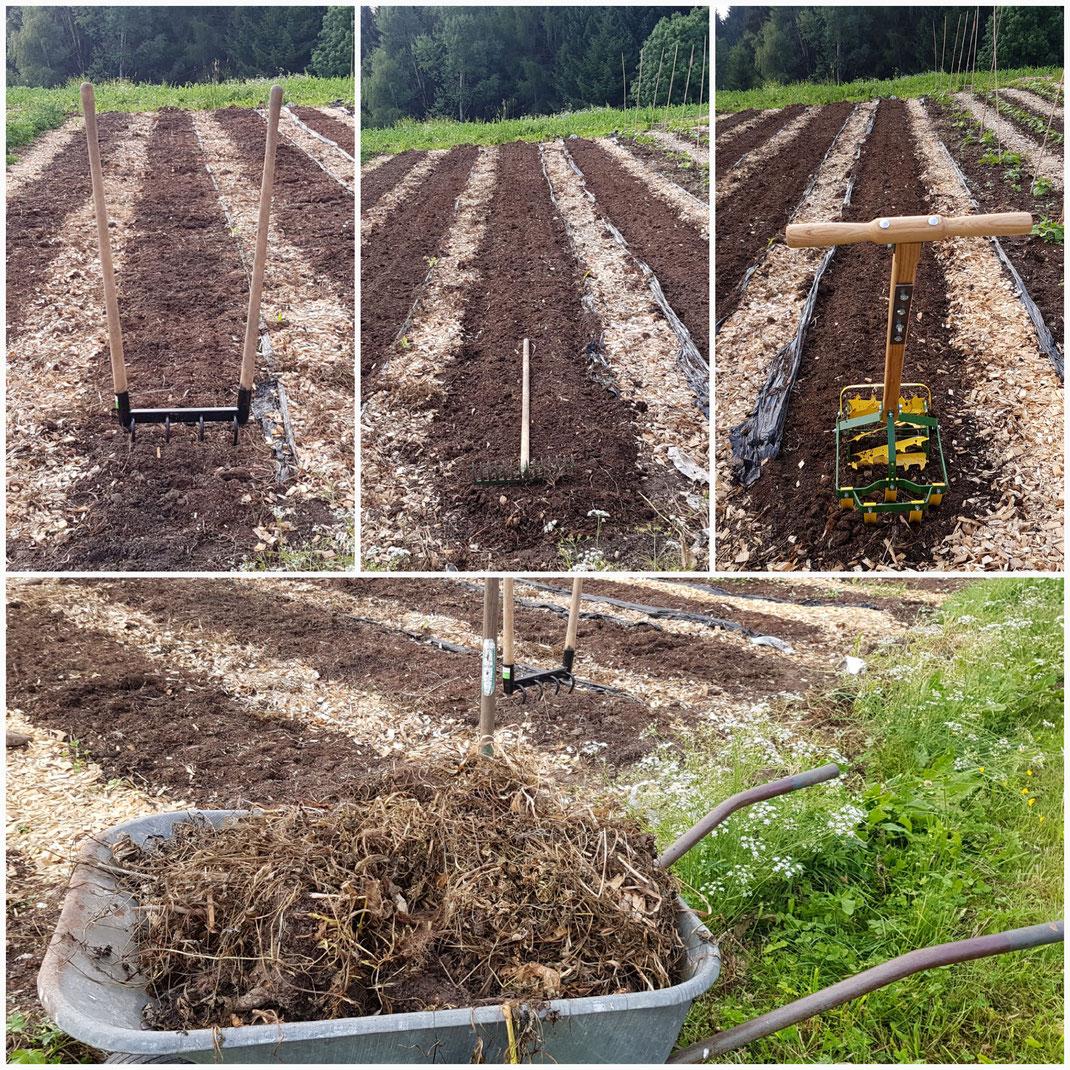 Dem Bodenleben zuliebe! Schonende Bearbeitung mit einfachen aber genialen Werkzeugen. Inzwischen wird nur noch ein Rechen verwendet.