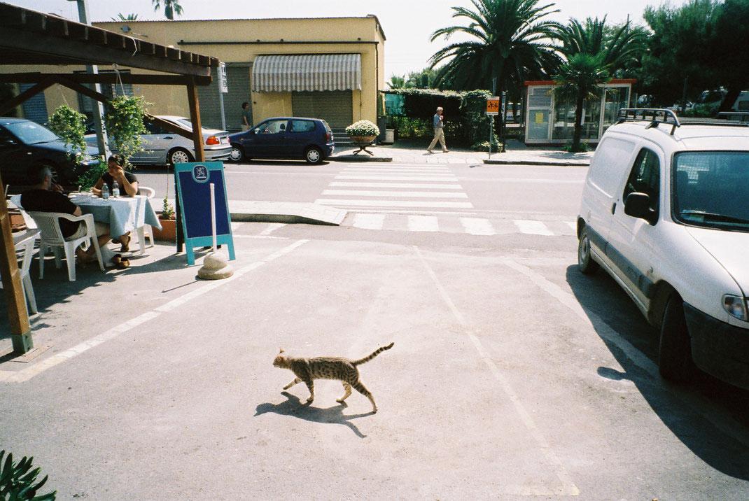Cervo, Italy © Eri Mantani