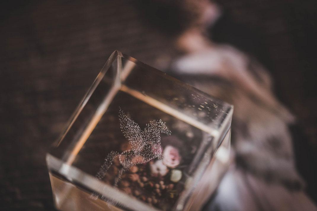 Memorias Impresas| El Álbum