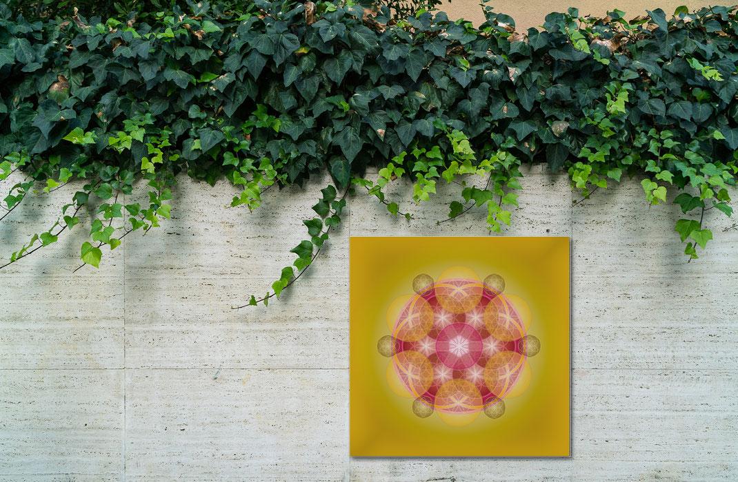 Lebendiges Mandala  © Susanne Barth - im Freien, Garten, Terrasse... Freie Arbeit. Foto: Moose by Icons8
