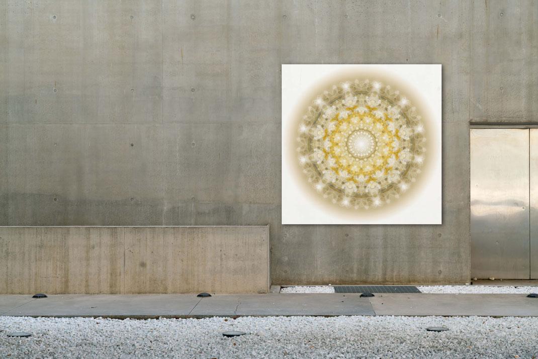 """Lebendiger Christall  """"Jesus"""" © Susanne Barth. Freie Arbeit, an einer Außenwand/öffentlicher Raum. Hier eine Montage mit Foto: Moose by Icons8"""