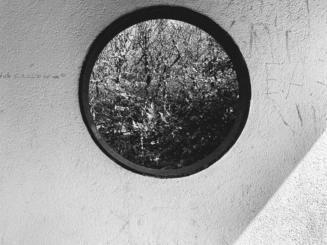 ROUND – Fotografiere nur runde Dinge! Ich habe zwar schon eine Glaskugel, aber es schadet ja nicht, auch nach anderen runden Motiven Ausschau zu halten. Beim auf der Parkbanksitzen entstand dieses Foto - ein Fenster neben mir.